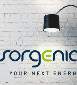 Sorgenia Next Energy luce e gas